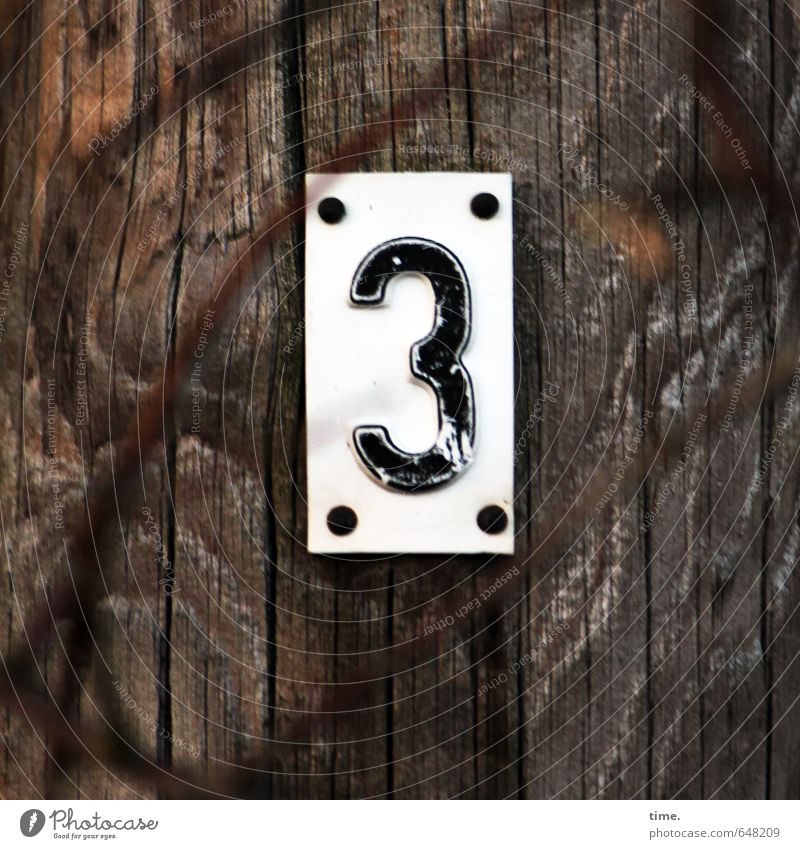 Four Branch Wood grain Wooden stake wood Plastic Digits and numbers Signs and labeling Trashy Dry Accuracy Testing & Control Arrangement Puzzle Services