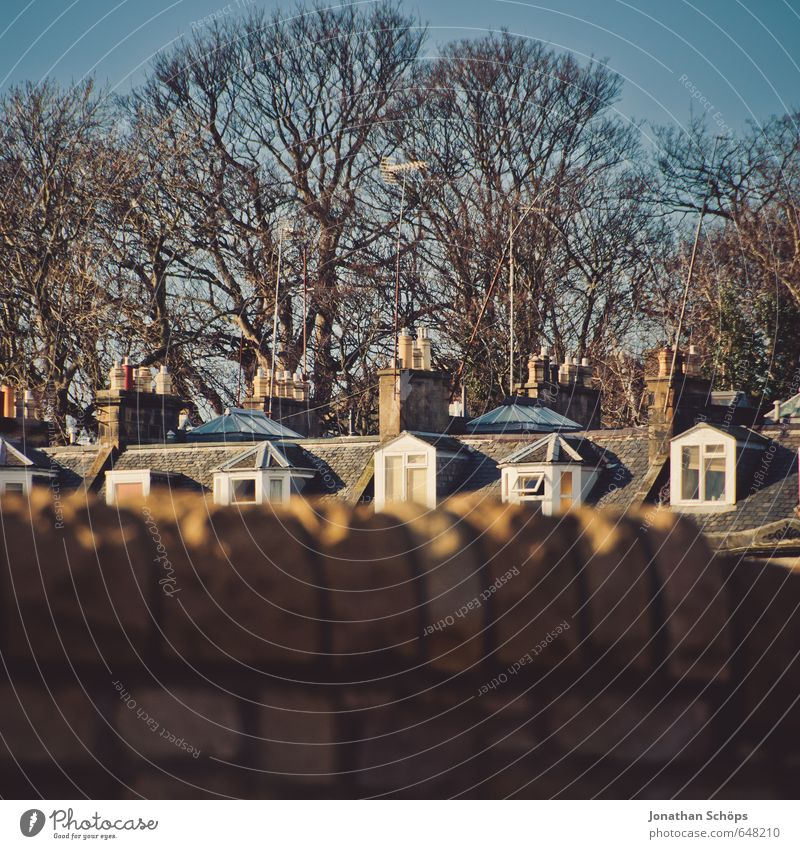 City Tree House (Residential Structure) Winter Wall (barrier) Car Window Brown Idyll Living or residing Roof Capital city Chimney Bleak Great Britain Scotland English