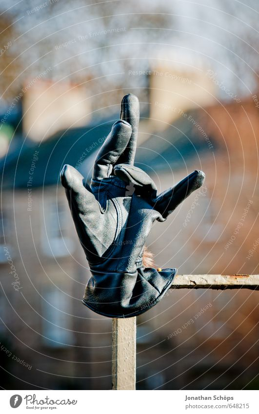 Joy Winter Black Cold Funny Style Elegant Lifestyle Things Fingers Posture Fence Indicate Humor Leather Gesture