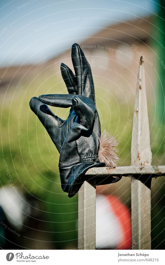 superb Lifestyle Elegant Black Gloves Fence post Forget Fingers Indicate Discovery Wayside Edinburgh Scotland Gesture Splay Funny Humor Leather Winter Cold