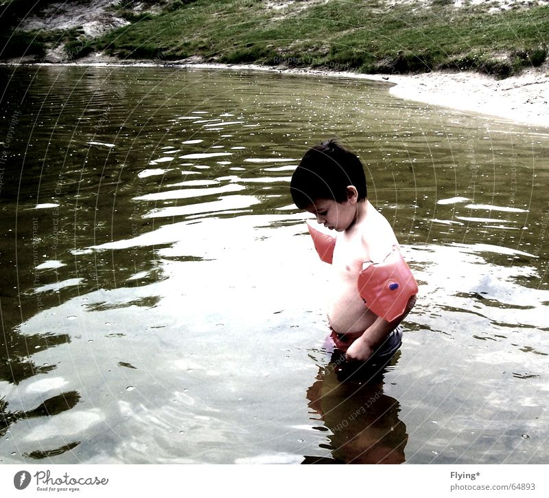 Water Beach Vacation & Travel Loneliness Cold Boy (child) Lake Small Swimming & Bathing Freeze Water wings Swimming trunks