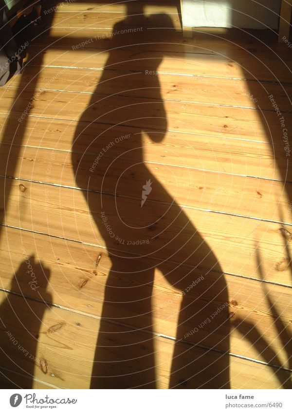 Sun Summer Things Wooden floor Shadow play