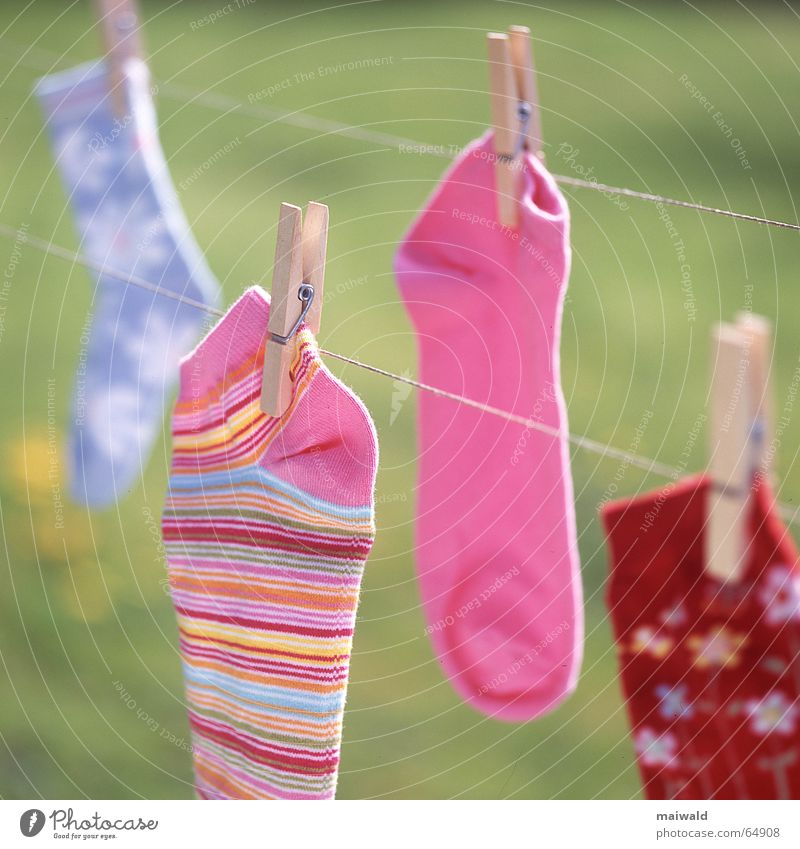 Always one is missing... Clothesline Stockings String Clothes peg Pince-nez Multicoloured Pink Red Flower Blossom Pattern Striped Light blue Green Dry Laundry