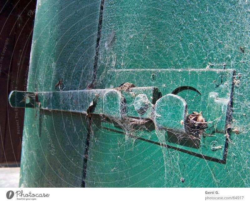 Old Green Wood Closed Open Crazy Derelict Castle Spider's web Undo Untouched Locking bar Wooden door