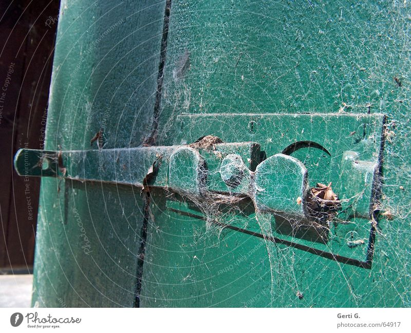 Old Green Wood Closed Open Crazy Derelict Castle Spider's web Undo Untouched Locking bar Wooden door
