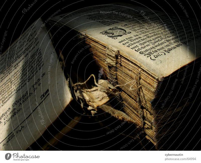 book binding Reading Book Binding Printing Broken Biblical Antique Paper Typography Sunlight tied glued Old Side versaly