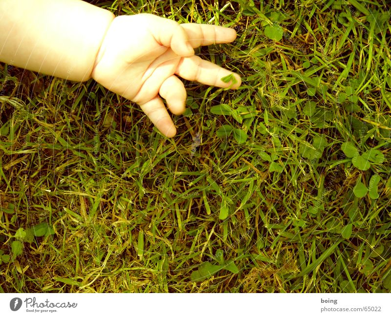 victory. oh sweet! the world belongs in children's hands II Success Baby Hand Fingers Meadow Clover Lie Toddler stretch