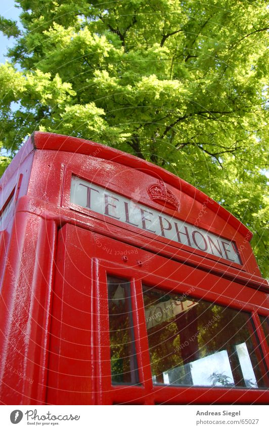 Tree Green Red Telephone Communicate London England Compromise Phone box