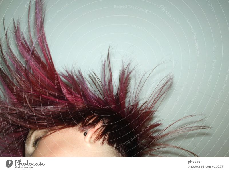 Face Eyes Head Hair and hairstyles Movement Pink Flying Violet Hairdresser Swing Short Earring Partially visible Strand of hair