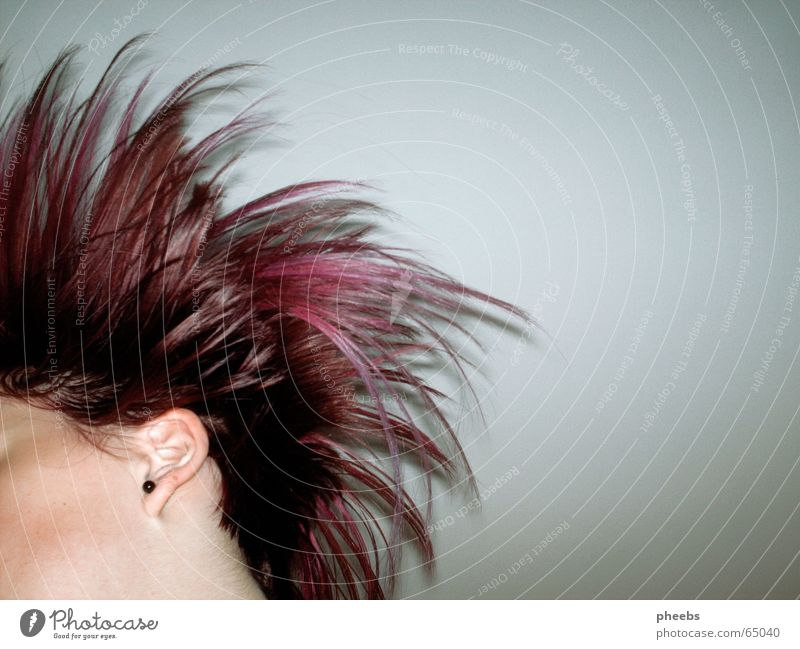 Face Head Hair and hairstyles Movement Pink Flying Violet Hairdresser Swing Short Earring Partially visible Strand of hair