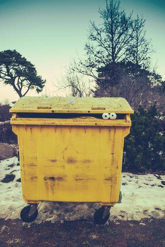 Winter Yellow Face Environment Snow Funny Exceptional Fear Car Decoration Crazy Observe Creativity Idea Curiosity Plastic