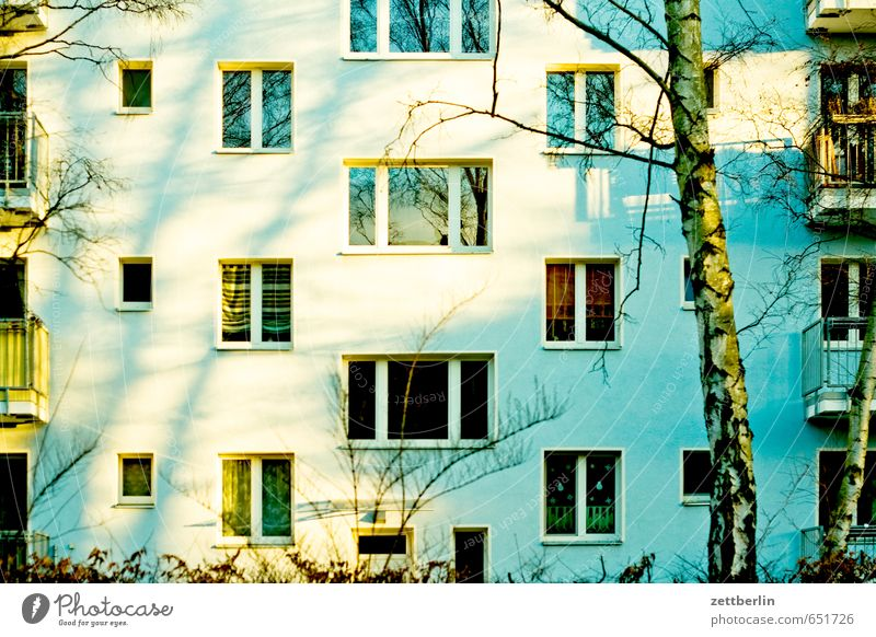 Nature City Sun House (Residential Structure) Window Spring Berlin Facade Living or residing Apartment Building Story Tower block Block Prefab construction