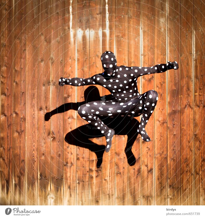 Jumping Jack Frog Style Joy Modern dance Masculine Androgynous Body 1 Human being 18 - 30 years Youth (Young adults) Adults Wooden wall Catsuit Dance Esthetic