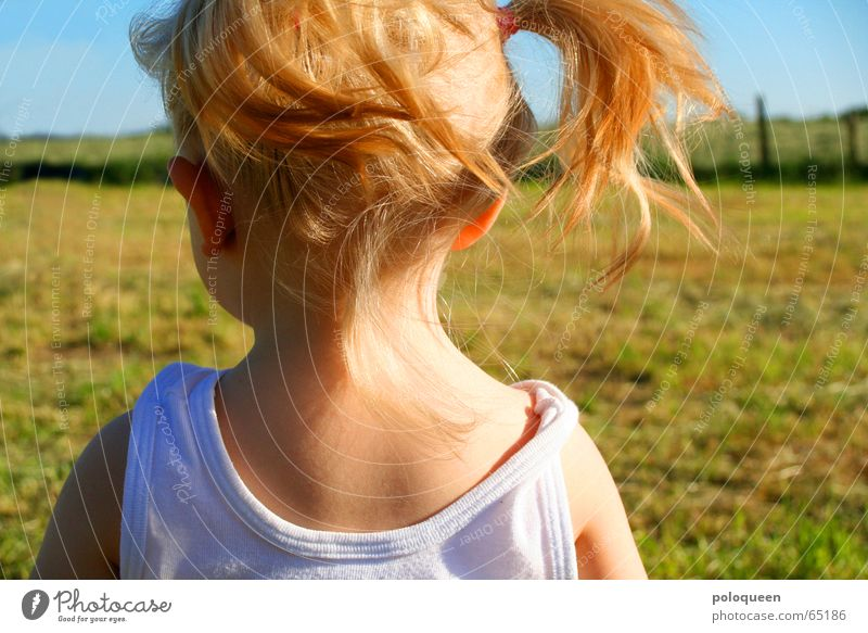 luna Girl Child Blonde Braids Summer Meadow Playing Wind Physics Nape Toddler Sun Warmth Back Head