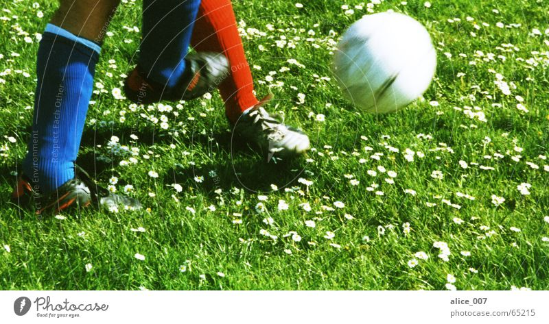 Man Blue Green White Red Flower Playing Grass Footwear Walking Flying Soccer Ball Lawn Stockings Fight