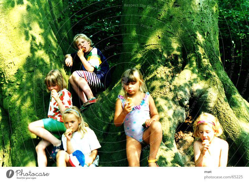 Child Girl Tree Sun Green Summer Joy Cold Freedom Bright Blonde Small Eating Ice cream Sweet