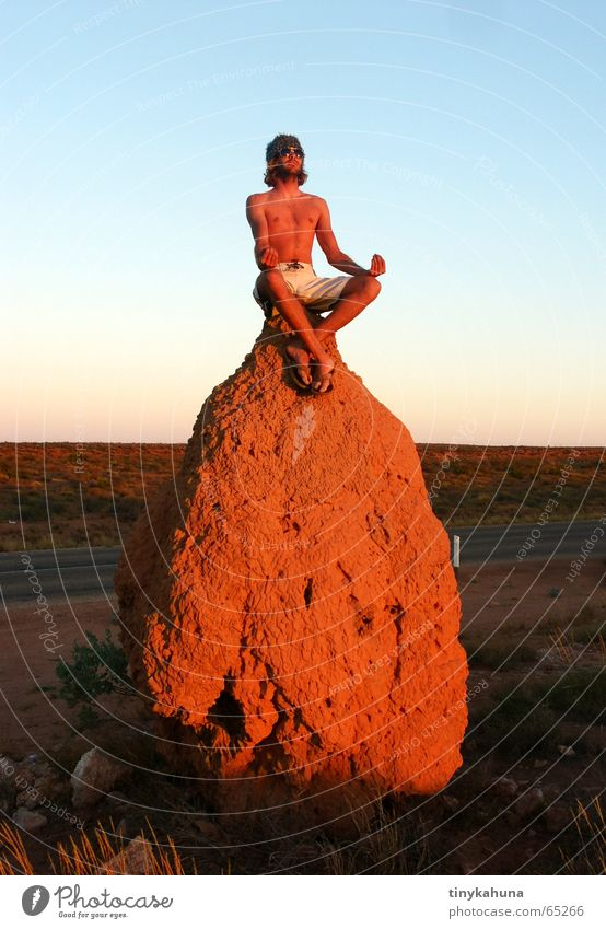 Joy Vacation & Travel Meditation Australia Nest Western Australia Termites' nest