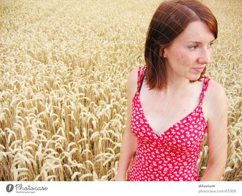 taking a ride with my best friend Portrait photograph Red Dress White Field Wheat Flower pushed Point Hair and hairstyles Summer