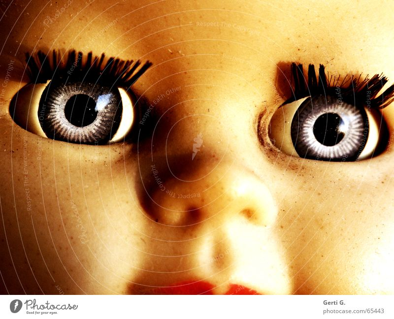 Portrait eyes, nose, mouth of an over 50 years old doll Doll's eyes Button eyes Ancient Toys Innocent Brilliant Glittering Eyelash Mascara Squint Looking view
