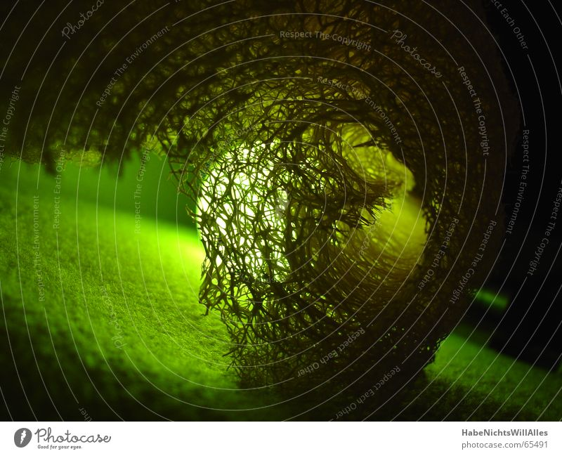 Greenish-t Light Felt Integration Interlaced Lighting Low-key Structures and shapes transmitted