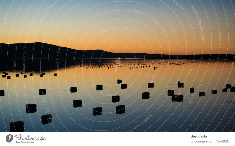 Mussel farm at sunset Fishing (Angle) Vacation & Travel Tourism Trip Far-off places Summer Summer vacation Ocean Island Nature Beautiful weather Coast Bay Fjord