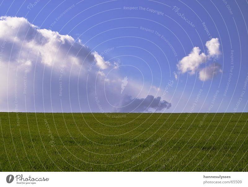 width 02 Clouds Spring Green Meadow Sky lanschaftsaufnahme Blue