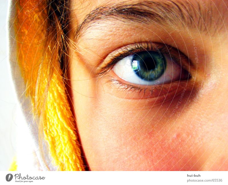 obstinate Hard Yellow White Green Looking Eyes Hooded (clothing) eyebrown Nose almost intractable Safety Hair and hairstyles Blue hairy hair Facial expression