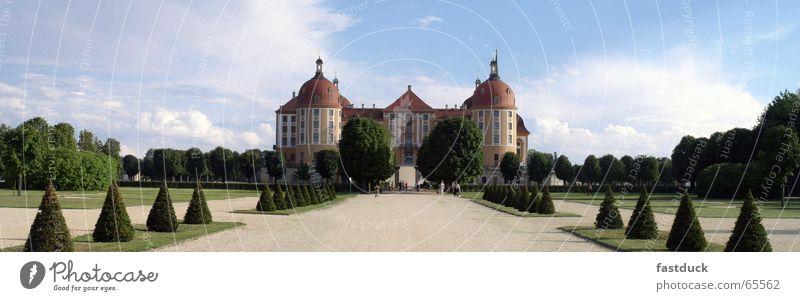 Moritzburg Castle Saxony Park Summer Green Moritzburg castle Landscape Blue