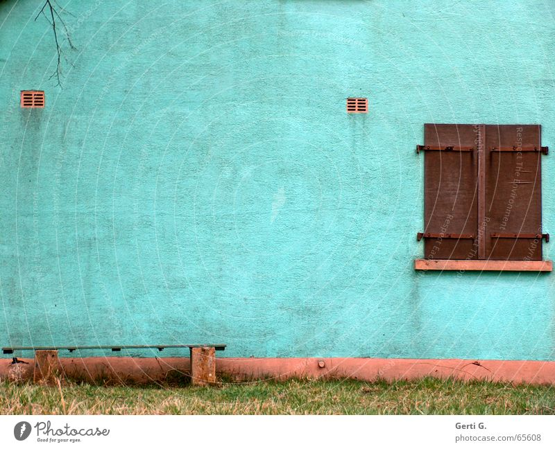 Meadow Window Grass Brown Dirty Facade Bench Branch Derelict Turquoise Plaster Shutter Window board Paintwork Grubby Wooden bench