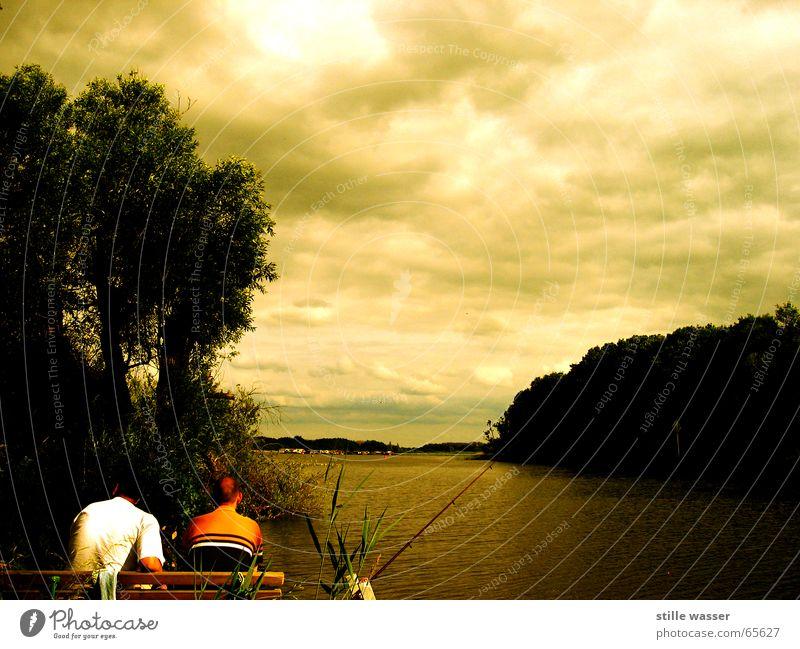 Human being Water Beautiful Tree Summer Clouds Relaxation Lake Bench Fishing (Angle) Fishing rod Mecklenburg-Western Pomerania Müritz