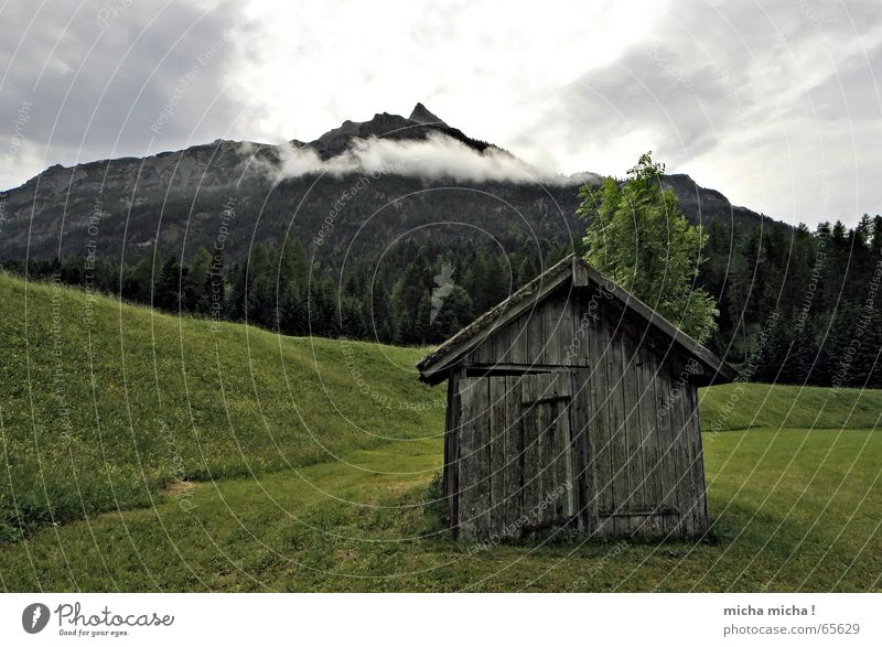 The hut Meadow Federal State of Tyrol Clouds Fog Forest Tree Calm Hut Mountain Weather
