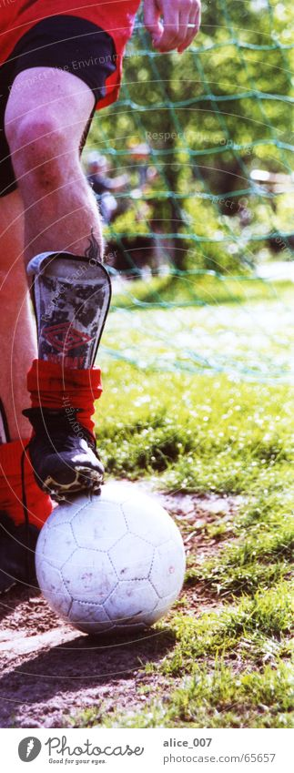 White Green Red Joy Sports Footwear Legs Soccer Ball Lawn Net Beautiful weather Knee Cuffs or leggings Football boots Knee pad
