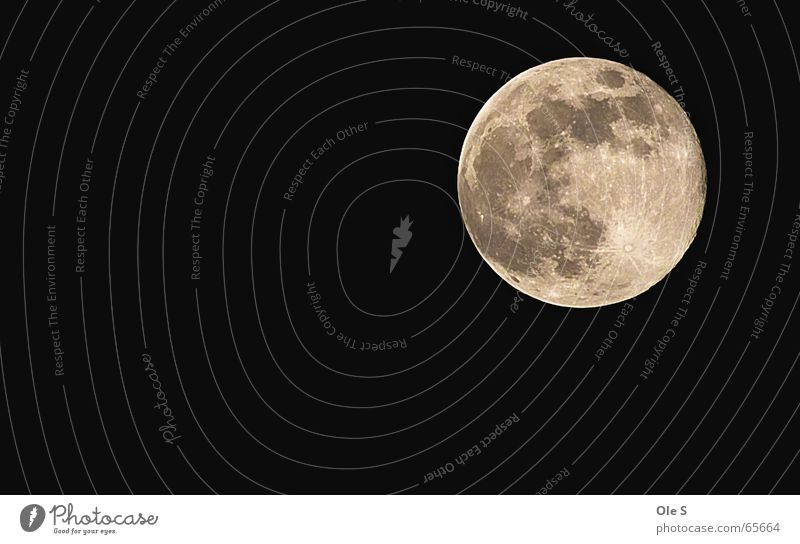 full moon Full  moon Moon Night Sky Night sky Evening Beautiful weather moon crater