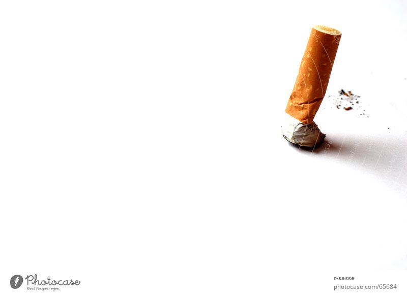 White Yellow Gold Authentic Health care Smoking Cigarette Poison Addiction Isolated Image Vice Unhealthy Minimalistic Dependence Quit Cigarette Butt