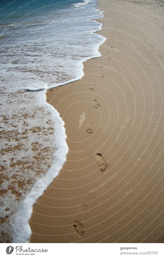 Water Vacation & Travel Ocean Summer Beach Loneliness Calm Sand Waves Tracks Refreshment Surf High tide Low tide Hissing