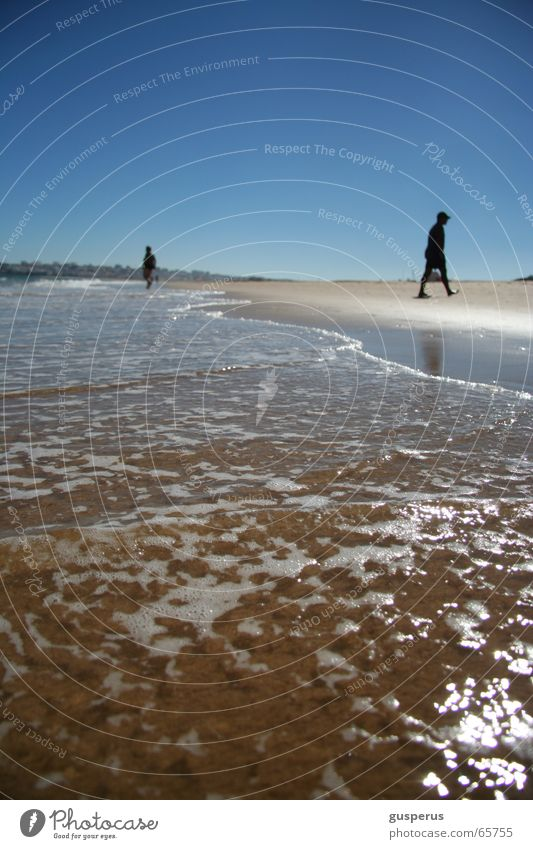 Water Vacation & Travel Ocean Summer Beach Calm Sand Waves Tracks Refreshment Surf High tide Low tide Hissing
