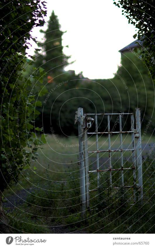 White Loneliness Door Gate Captured Hell Penitentiary Flee Refugee