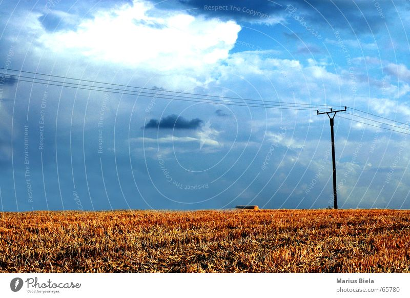 nature contrast... Clouds Field Electricity Electricity pylon Harvest Sky Grain Blue oh, that's all I can think of now...