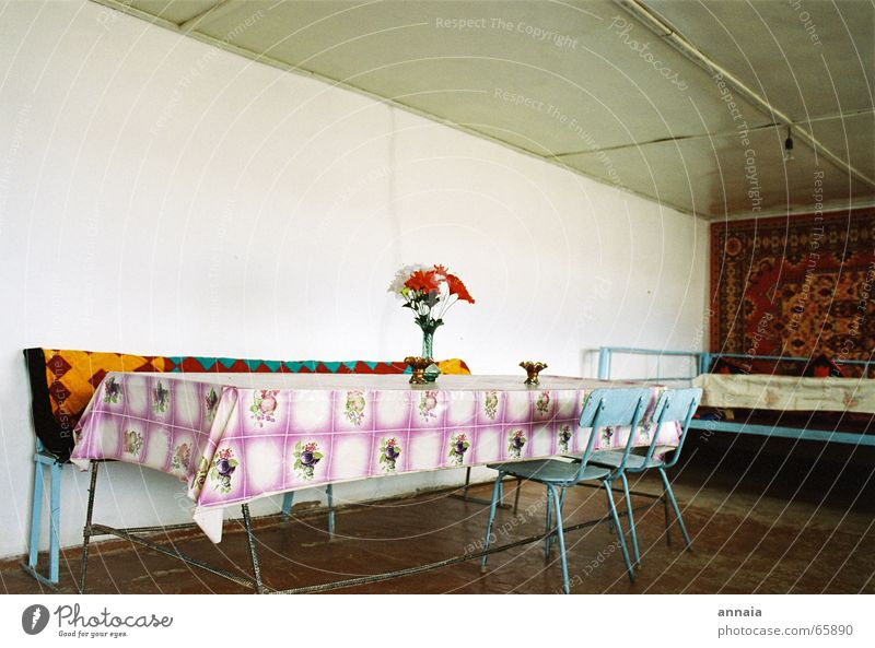 live better Table Chair Empty Gloomy Guest Wall (building) Calm Snack bar Living or residing wax sheet plastic flowers Room host Wait restaurant retro