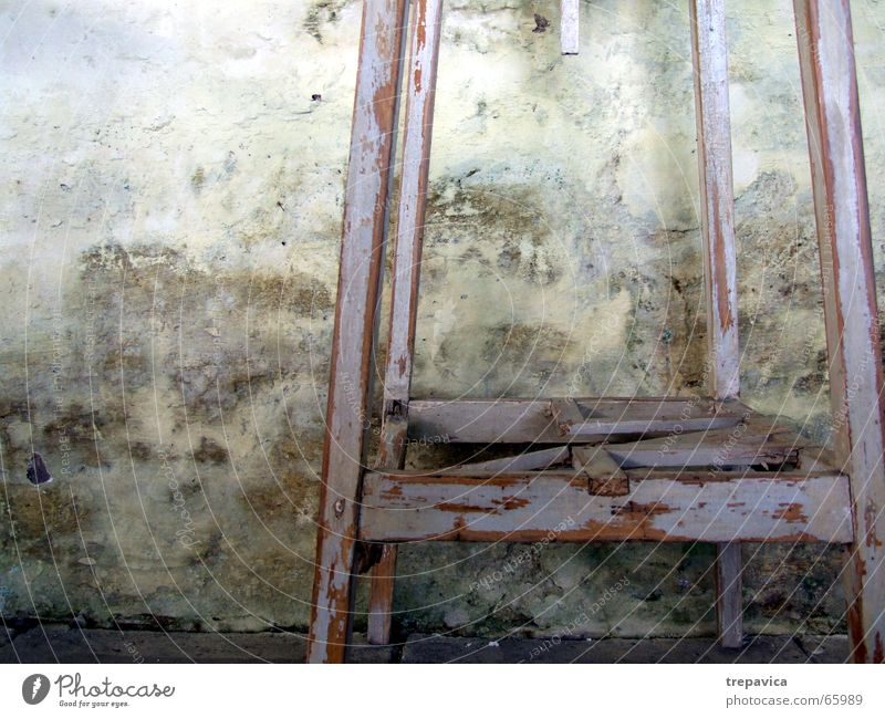 Old Wall (building) Damp High tide Mold