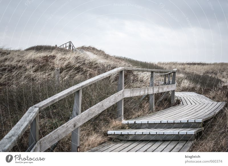 Sylt XIII Environment Nature Landscape Sky Grass North Sea Ocean Dune Marram grass Germany Europe Stairs Sand Wood Going Blue Brown Gray Banister Far-off places