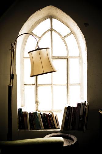 Green Window Interior design Style Lamp Brown Dream Room Gold Living or residing Illuminate Sit Esthetic Book Study Reading