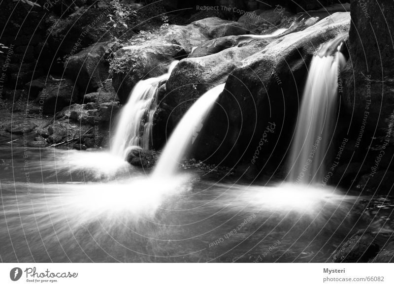 Mullerthal - Luxembourg Schiessentümpel Long exposure müllerthal Luxemburg Water Waterfall canon Black & white photo
