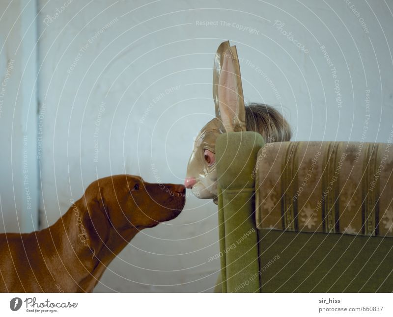 STUDIO TOUR | Encounter Face 2 Human being Dog Hare & Rabbit & Bunny Animal Kissing Looking Funny Trashy Brown Green Love of animals Infatuation Life