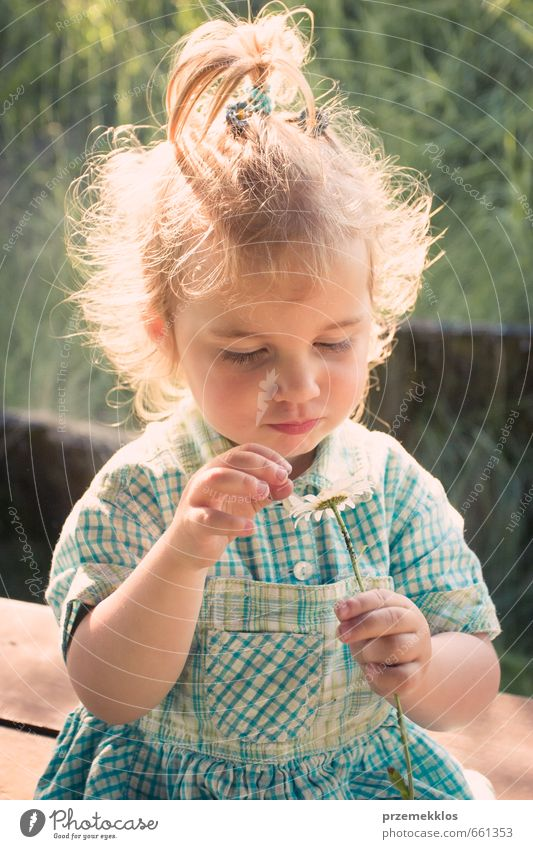 Little blond girl holding daisy flower Summer Child Girl Infancy 1 Human being 3 - 8 years Flower Wild plant Dress Observe Touch Discover Sit Blonde Beautiful