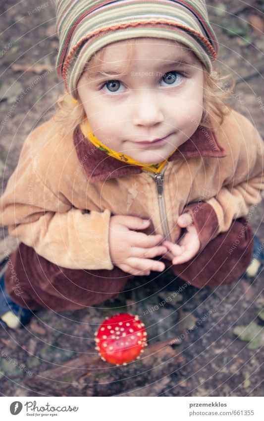 I found it Human being Child Beautiful Summer Red Girl Forest Autumn Small Above Natural Brown Blonde Infancy Sit Authentic