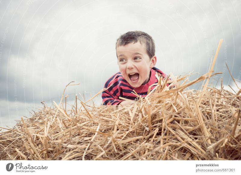 Boy calling from heap of hay Joy Playing Summer Child Schoolchild Boy (child) Infancy 1 Human being 3 - 8 years Clouds Laughter Small Cute Brown Euphoria