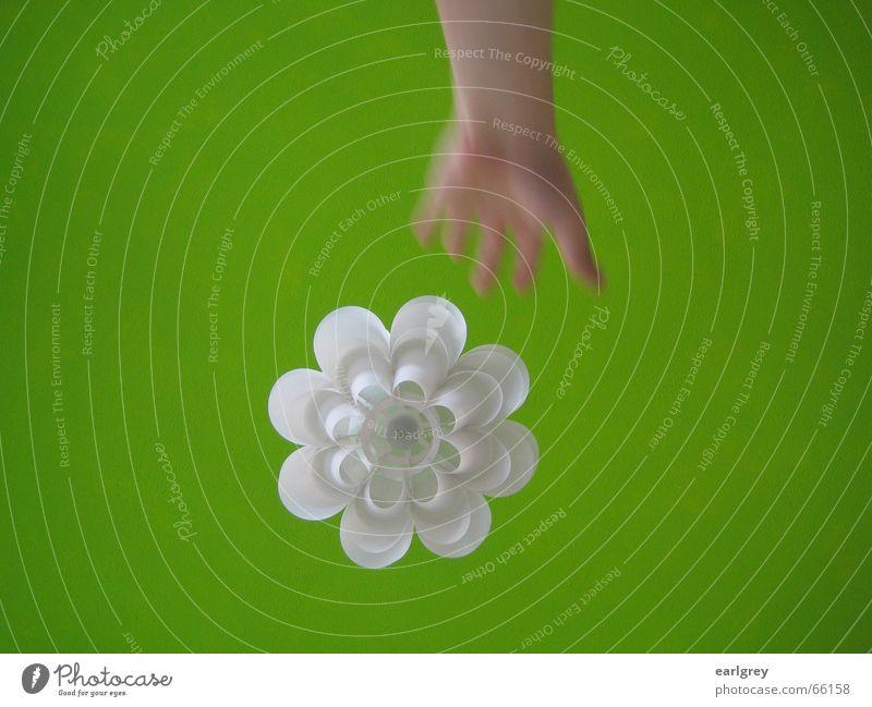 Hand White Green Plant Lamp Style Room Design Modern Catch Blanket Sweden Full