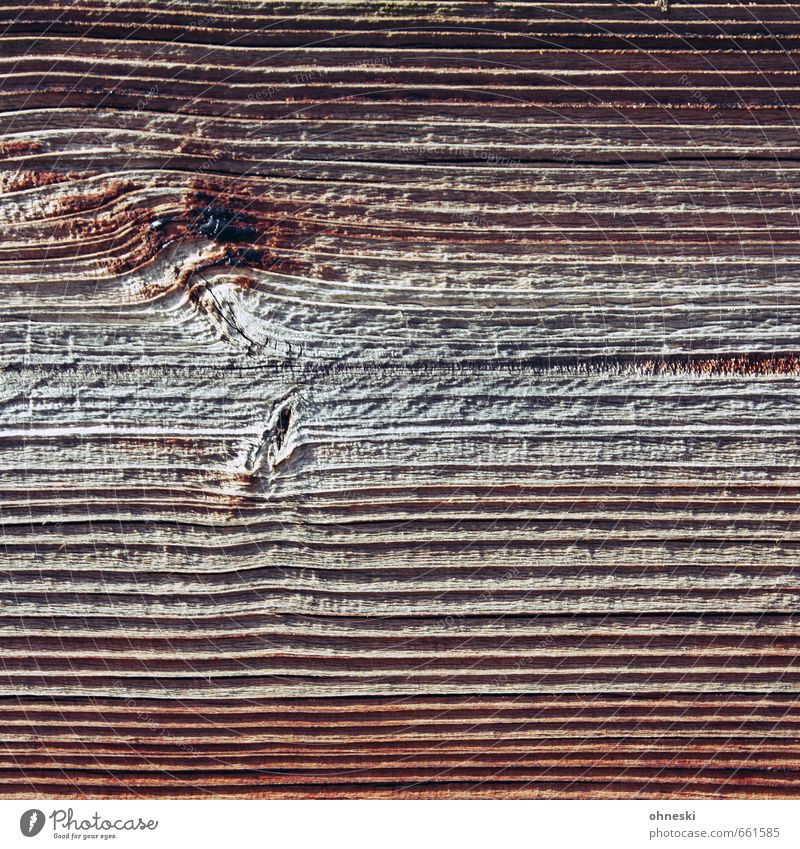 Good Wood Fence Wooden board Line Natural Brown Wood grain Colour photo Exterior shot Abstract Pattern Structures and shapes Copy Space left Copy Space right
