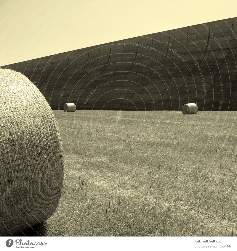 White Black Meadow Wall (barrier) Concrete Industrial Photography Agriculture Beautiful weather Coil Badlands Straw Bale of straw Water basin